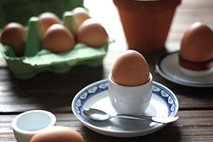 organic eggs organska jaja